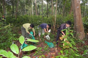 Drop wildlife natural environment
